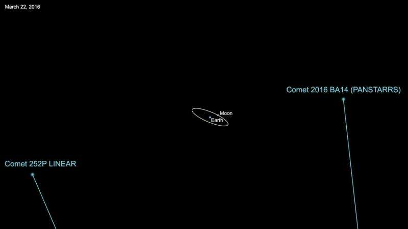 A 'tail' of two comets