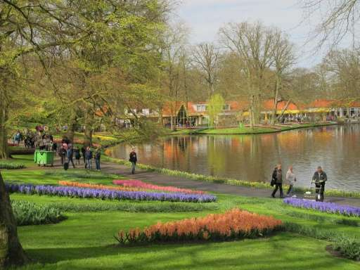 A view of the 67th annual springtime display at the Keukenhof gardens, created in 1857 and modelled on English gardens of the pe