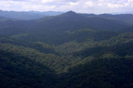 A view of the Rio Platano biosphere reserve in Honduras, where explorers over the past century have claimed several times to hav