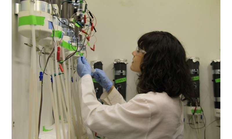 Bacterial research may lead to less polluted waters
