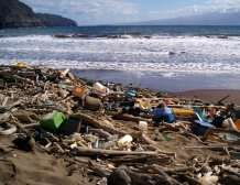 Beach litter study finds rise in polystyrene foam, balloons and fishing nets