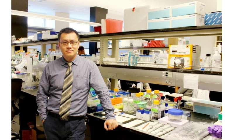 Biologist believes an intestinal cell type may be source of inflammatory bowel disease