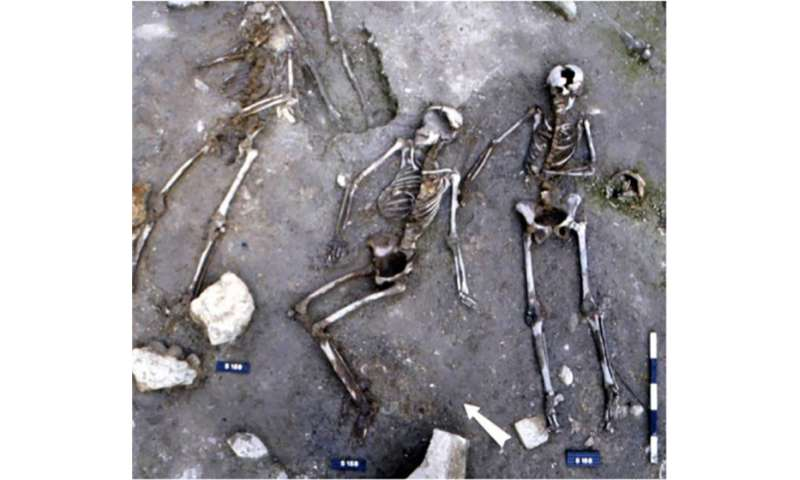 Black death viral strains persisted to create repeated European outbreaks