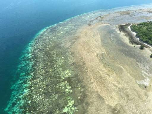 Bleached coral reefs pictured between Cairns and Papua New Guinea on the Great Barrier Reef in Queensland's far north