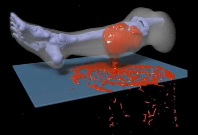 Blood work: ONR-sponsored technology simulates how legs bleed