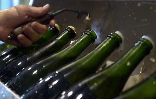 "Bottles of ""cremant d'Alsace"" sparkling wine are pictured during the disgorging process on August 12, 2016, in Steinba"