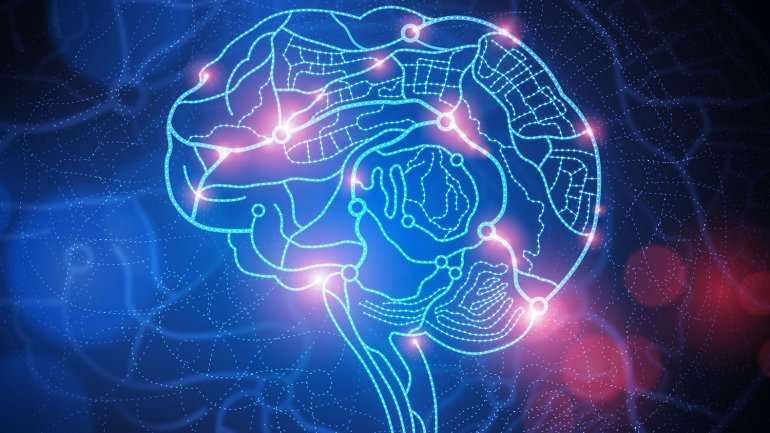 'Brain GPS' network allows brain to track location when at rest