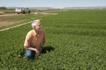 California nitrogen assessment shows the state of the science on nitrogen use and pollution