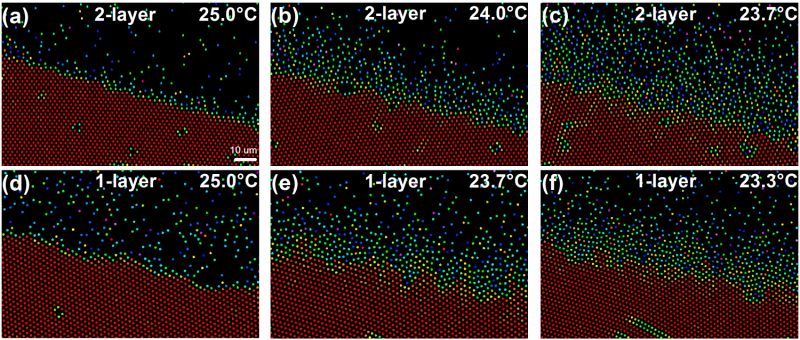 Challenging observations of 2-D melting and surface premelting at the single-particle level