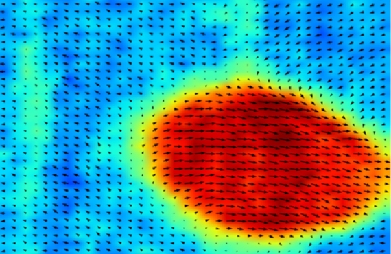 Chemists establish fundamentals of ferroelectric materials