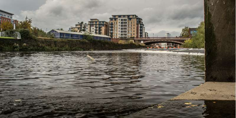 Cocktail of drugs is polluting our rivers