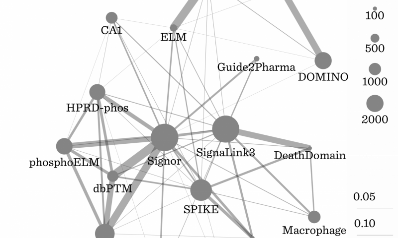 Combining pathway data resources gives a clearer view on complex biological interactions