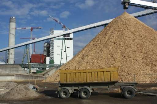 Could forestry revive Finland's economy post-Nokia? Metsa Fibre's new pulp and bioproduct mill in Aeaenekoski, Finland