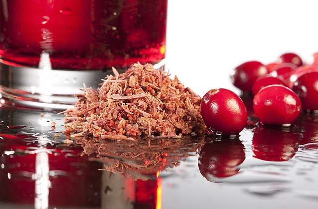Cranberry compound may help prevent urinary tract infections