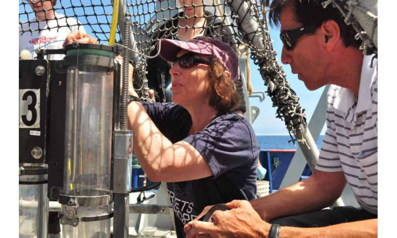 Deep-sea biodiversity impacted by climate change's triple threat