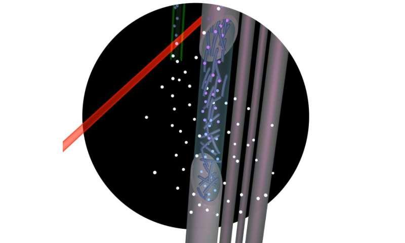 'Disruptive device' brings xenon-NMR to fragile materials