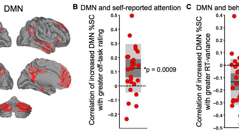 Resolving contradictions: Better understanding the basic role of the brain's Default Mode Network