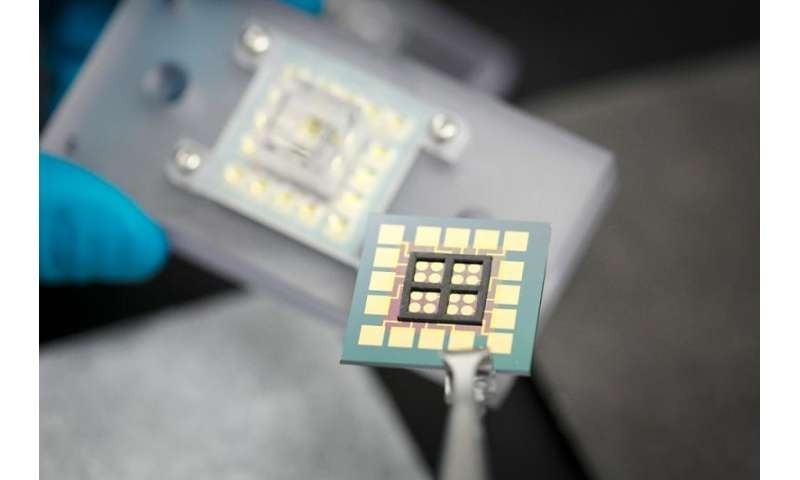 DNA chip offers big possibilities in cell studies