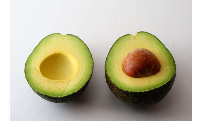 Don't panic, but your avocado is radioactive—study eyes background radiation of everyday objects