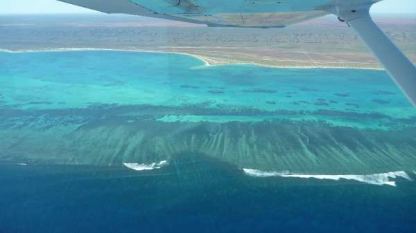 Drawing connections between Ningaloo and Great Barrier reefs