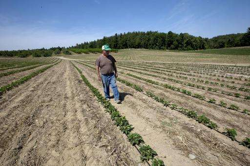 Drought hits Northeastern US, could last months
