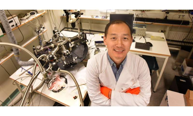 Efficient organic solar cells with very low driving force