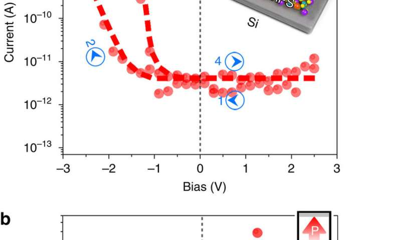 Electric characterization of the vdW CIPS/Si diode
