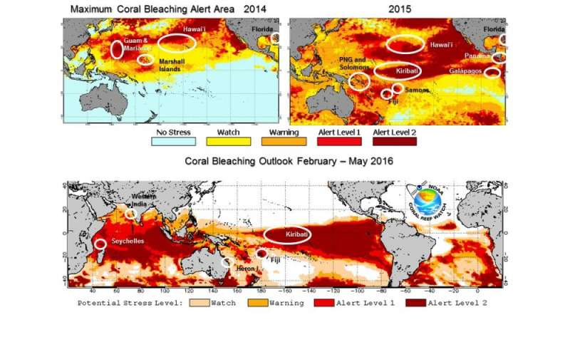El Niño prolongs longest global coral bleaching event