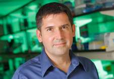 Estrogen signaling impacted immune response in cancer