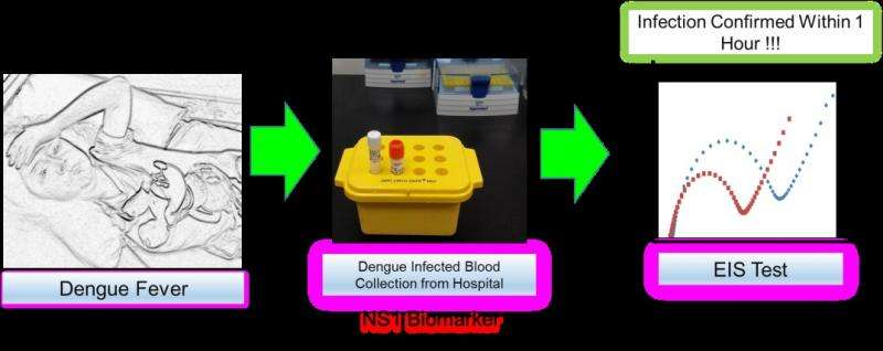 Fast detection for Dengue virus with new diagnostic