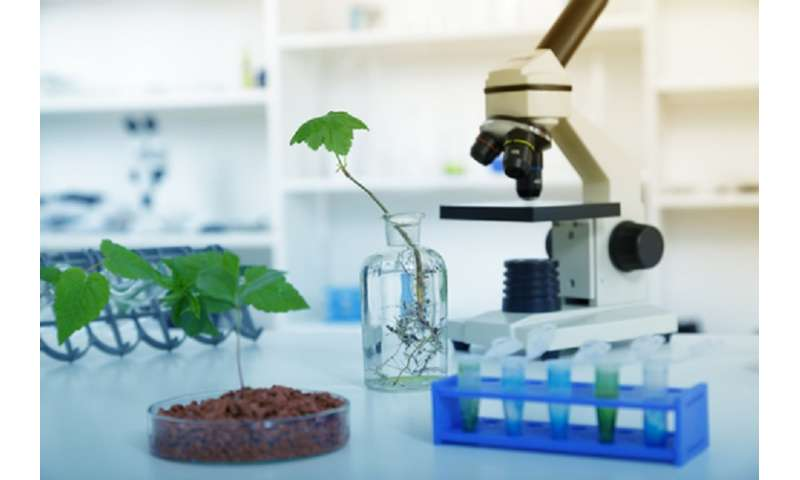 Feeding a Mars mission: the challenges of growing plants in space