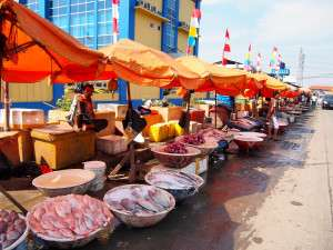 Fishing for food security