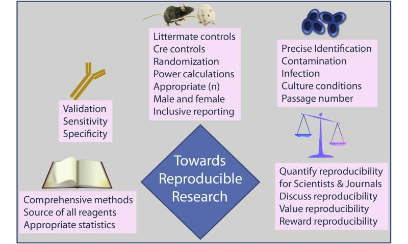 Five ways to tackle the reproducibility crisis in biomedical research