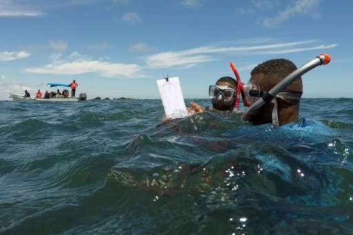 Former fishermen turned marine ecosystem rangers take notes on a pad after snorkelling to observe the health of the coral reef i