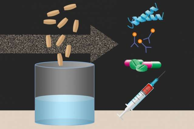 Freeze-dried cellular components can be rehydrated to churn out useful proteins