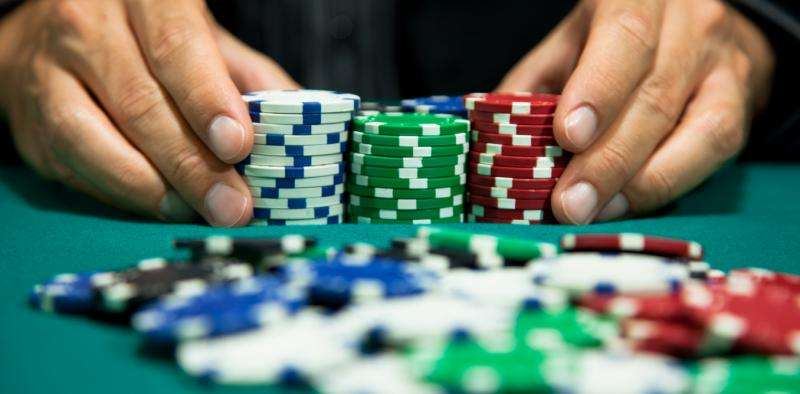 Gambling on limited information: our visual system and probabilistic inference