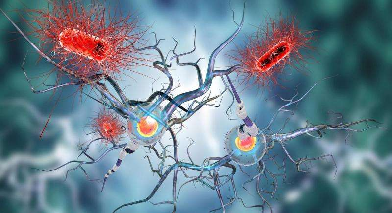 Genetic clue to how patients respond to treatment for Parkinson's Disease