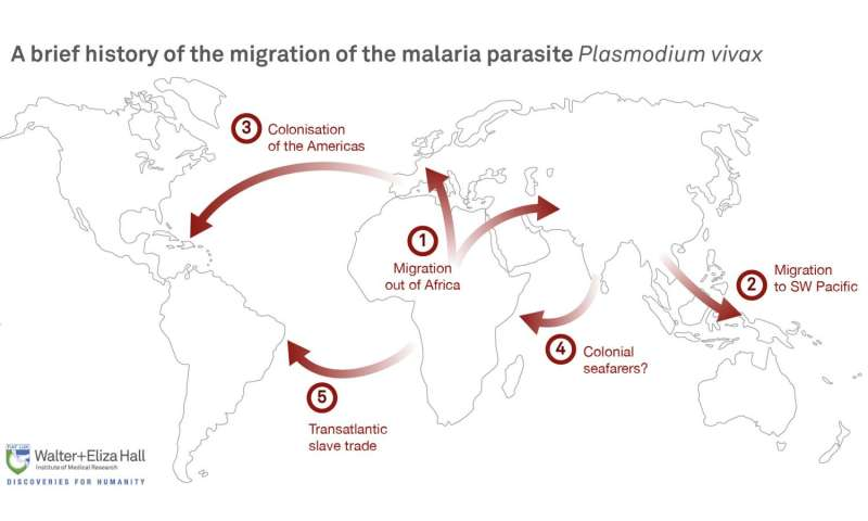Genome technology boosts malaria control efforts