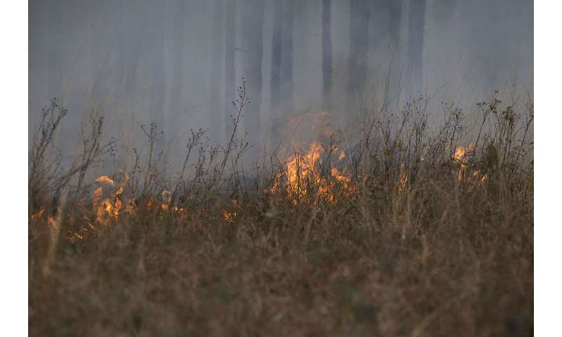 Global data shows inverse relationship, shift in human use of fire