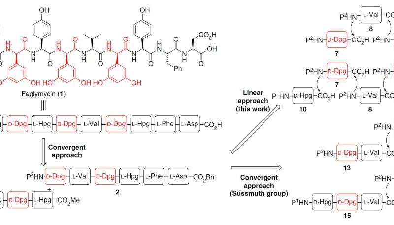 Going with the flow: Facile synthesis of a complex biologically active oligopeptide