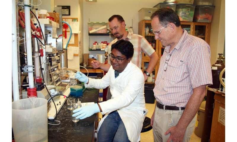 Green light: USU biochemists describe light-driven conversion of greenhouse gas to fuel