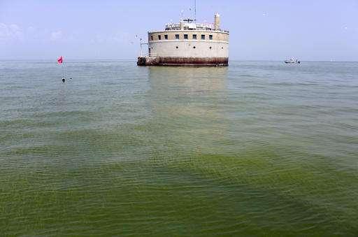 Groups: Work curbing Lake Erie algae need to target hotspots