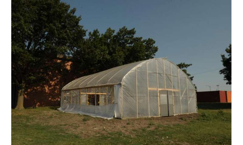Growing produce in high tunnels reduces losses, extends shelf life