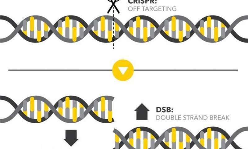 GUIDE-Seq technology might detect double-strand DNA breaks in plants