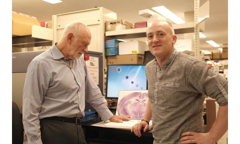 Gut feeling: ONR research examines link between stomach bacteria, PTSD