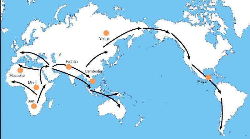 Harmful mutations have accumulated during early human migrations out of Africa