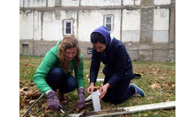 Healing the soil
