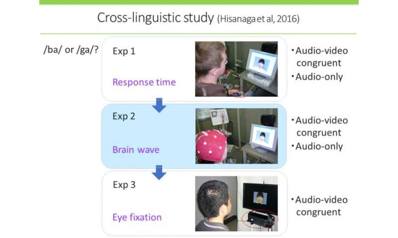 Hearing with your eyes -- a Western style of speech perception