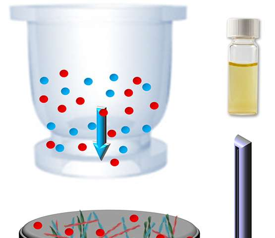 Highly efficient heavy metal ions filter