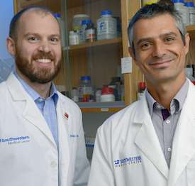 HIV protein manipulates 100s of genes to advance progression into AIDS, UTSW study shows